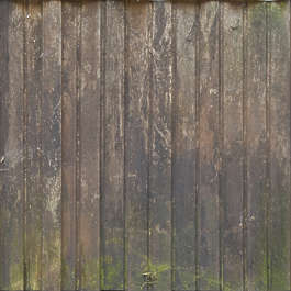 wood planks old dirty siding mossy