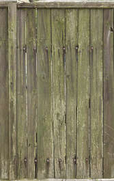 wood plank planks mossy weathered fence siding