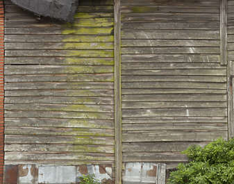 wood planks mossy barn siding