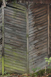 wood planks mossy damaged siding