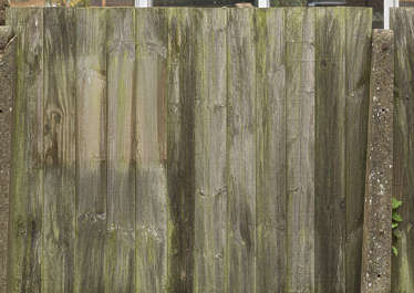 UK wooden wood fence