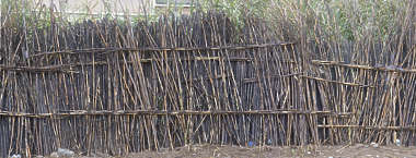 thatched thatch morocco fence twig twigs wicker