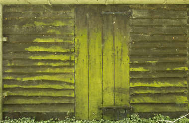 wood planks mossy old barn overlapping siding
