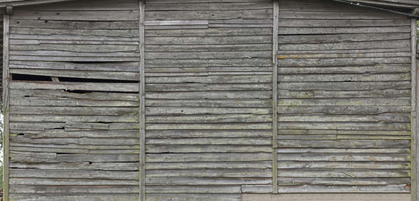 wood planks mossy barn old siding