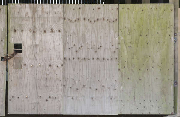 wood bare plywood UK