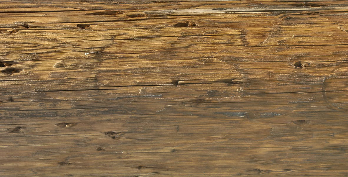 Woodrough0072 Free Background Texture Wood Pole Rough