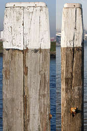 wood rough old pole harbour