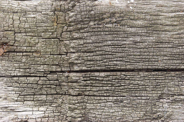 wood old rough cracked split closeup
