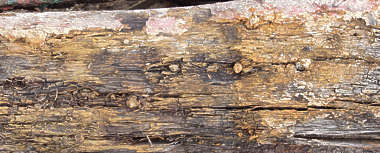 wood old rough damaged splinters stains