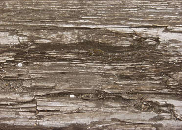 wood old rough dirty closeup