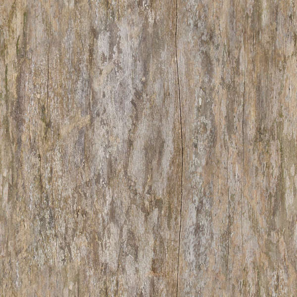 Barkstripped Free Background Texture Wood Tree Stripped Bare Dirty Smooth Green Brown